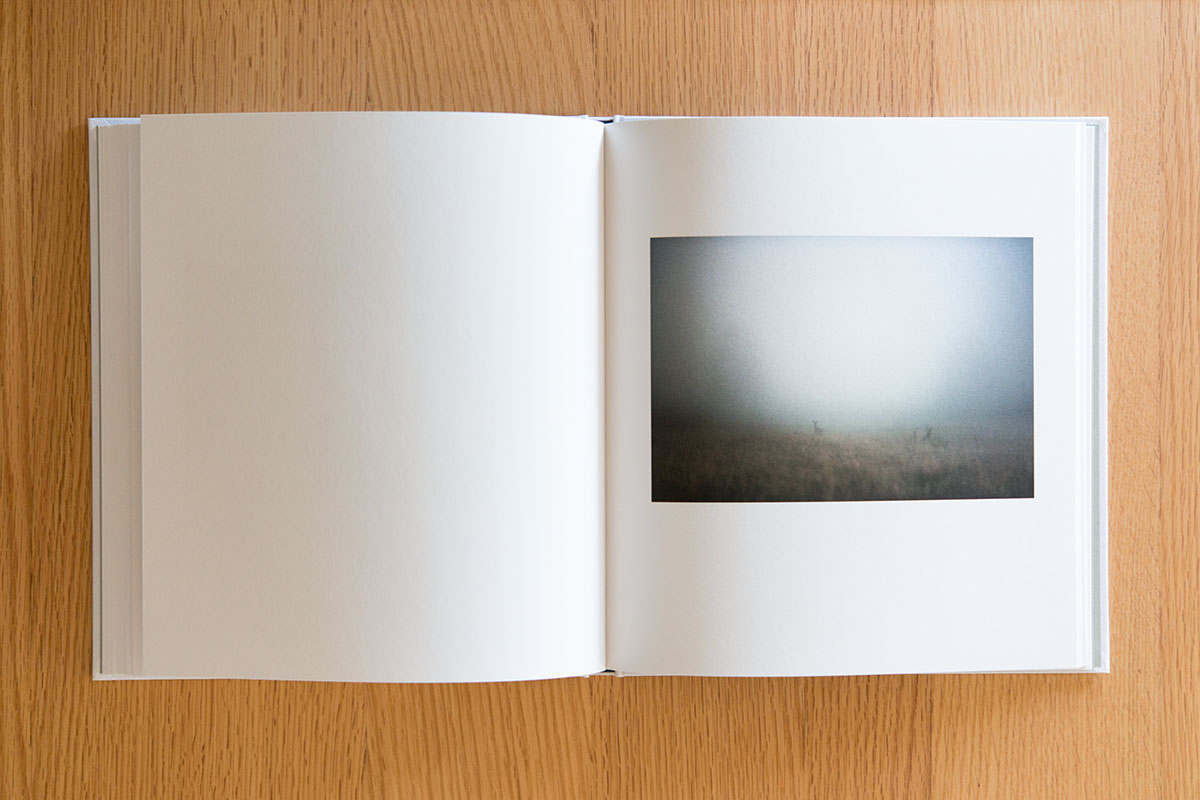 trace of fog book23